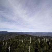 Majestic landscape of the top of the blue ridge mountains from Clingman's Dome, Tennessee