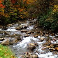 Streams and landscape in Great Smoky Mountains National Park, Tennessee