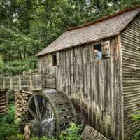 The Miller and His Wheel in Great Smoky National Park