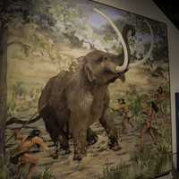 Mastodon hunt painting during the stone age in Tennessee Museum