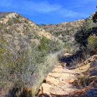 Trail Gets Harder at Big Bend National Park, Texas