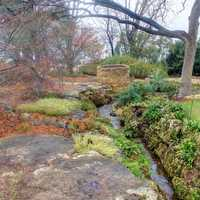 Stream in Garden in Dallas, Texas