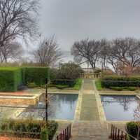 Water Pool in garden in Dallas, Texas