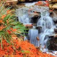 Waterfall in Gardens in Dallas, Texas