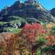 Fall Colors and Hills at Guadalupe Mountains National Park