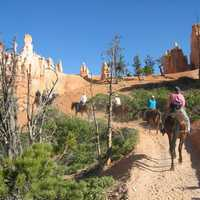 Horseback Riders in Bryce Canyon National Park, Utah
