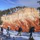 Snowshoe trails in the winter at Bryce Canyon National Park, Utah