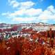 Winter landscape and rock amphitheatre in Bryce Canyon National Park, Utah