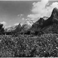 East side of Zion Canyon in 1929 in Utah