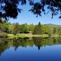 Peaceful Pond Landscape in Green Mountain National Forest