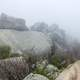 Foggy and Misty at the Rocky Peak in Virginia