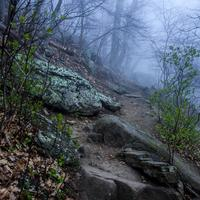 Misty Hiking path to the Peaks of Otter