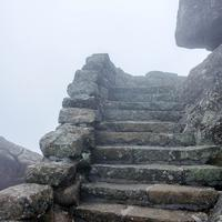 Steps at the top in the fog on the Peaks of Otter