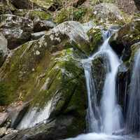 Dark Hollow Falls Cascading Water at Shenandoah