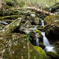 Landscapes of the South River in Shenandoah National Park