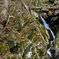 Closer view of the lower Dark Hollow Falls in Shenandoah