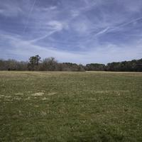 Field Near the French Hospital in Yorktown, Virginia