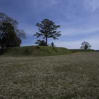 Trenches and Landscape in Yorktown, Virginia