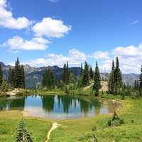 Pond and landscape under blue skies in Mount Rainier National Park, Washington