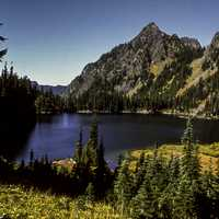Scenery from Olympic National Park in Washington