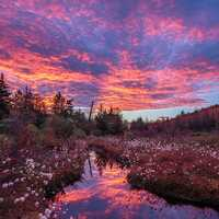 Sunrise over the pond in Monongahela National Forest