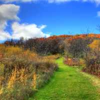 Autumn hiking path in Blue Mound State Park, Wisconsin
