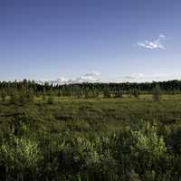 Horizon, sky, and landscape in Chequamegon National Forest, Wisconsin