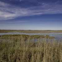 Wide Angle View of the Marsh and skies at Crex Meadows