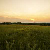 Dusk and sunset over the grassland in Cross Plains State Park