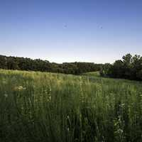 Grassland, forest, and skies at Cross Plains State Park