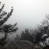 Foggy Bluff at Devil's Lake State Park, Wisconsin