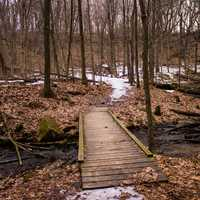 Landscape with bridge across the creek at Governor Dodge State Park, Wisconsin