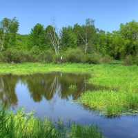 Landscape and Pond at Hoffman Hills State Recreation Area, Wisconsin