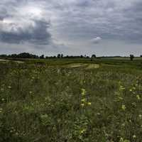 Farms and Marsh Grasses under cloudy Skies at Horicon marsh