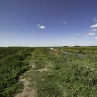 Hiking Trails and landscape at Horicon Marsh