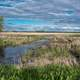 Marshlands under the sky landscapes