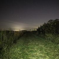 Night Time Hiking Trail with Starry Sky at Horicon Marsh