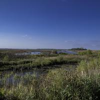 Overlook landscape at Horizon Marsh, Wisconsin
