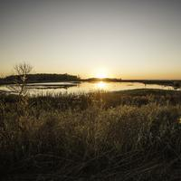 Sunset Landscape over Horicon Marsh