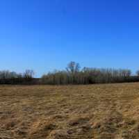 Grasslands landscape at Kettle Moraine South, Wisconsin