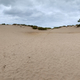 Panoramic of Kohler-Andrae Sand dunes