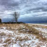 Winter on the dunes at Kohler-Andrae State Park, Wisconsin