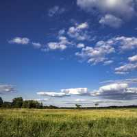 Blue Skies over the Marsh Landscape