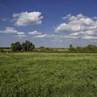 Grassy field landscape under sky and clouds