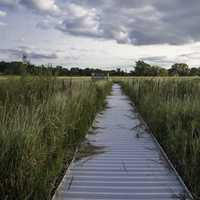 Long Boardwalk within Cherokee Marsh
