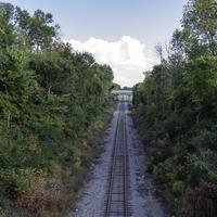 Railroad Tracks between the trees into the Clouds