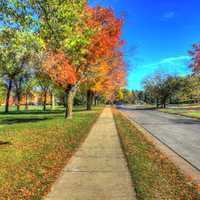Fall Roadways in Madison, Wisconsin