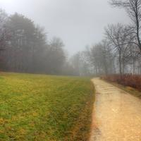 Foggy hiking Path in Madison, Wisconsin