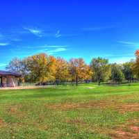 Landscape of a park in Madison in Madison, Wisconsin