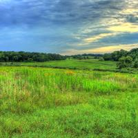Landscape of the Natural Area in Madison, Wisconsin